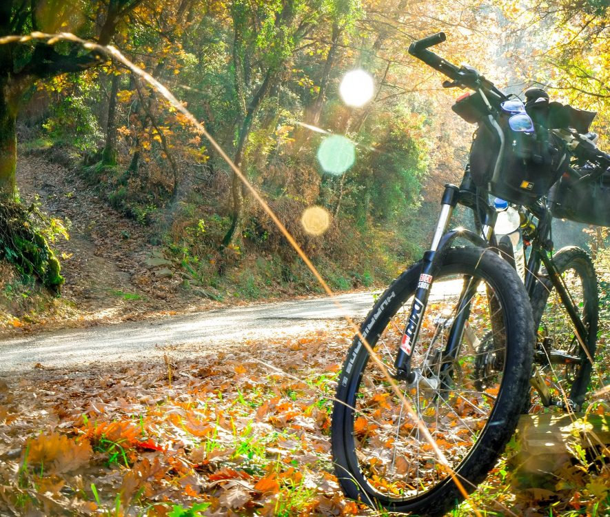 Cycling Routes, Cycle Shops and Bike Hire in Poole and Bournemouth