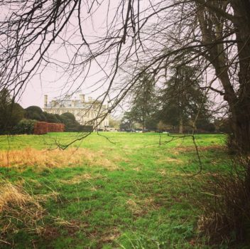 Walks in Bournemouth: Kingston Lacy